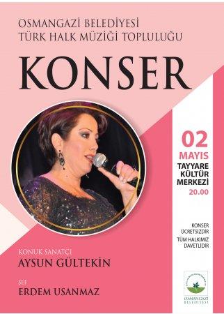 Türk Halk Müziği Topluluğu